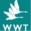 What's On @ Slimbridge Wetland Centre
