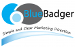 BlueBadger Marketing