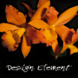 Design Element Flowers