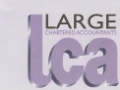 Large Chartered Accountants