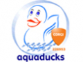 Aquaducks Plumbing and Heating - Kingston