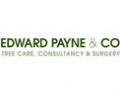 Edward Payne & Co Tree Specialists