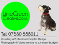 Limegreen Creative - Graphic Design, Photography & Video