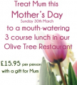 Mother's Day at the Olive Tree Restaurant