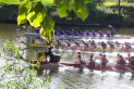 Get Fit and Have Fun on the Water with Henley Dragons
