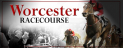 Pershore Plum Festival at Worcester Racecourse
