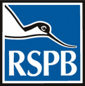RSPB Talk - Texas (From the Gulf to the Rio Grande)