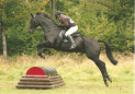 Hunter Trial at Durham's Farm Riding School & Livery Yard on 2nd June