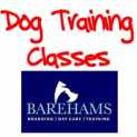 Dog Training for Intermediate Obedience at Barehams
