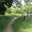 Nature Ramble at Roundshaw Downs LNR - Sutton Ecology Centre activity