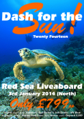 Dash for the Sun Scuba Holiday