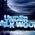 Under Milk Wood at the Festival Theatre