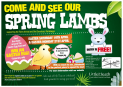 Come and see our Spring Lambs