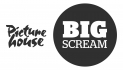 Big Scream Club