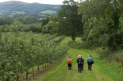 Evening Walk from Holt with Worcester Ramblers