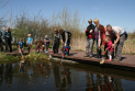 Pond Dipping and Wild Art