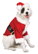 GSPCA SANTA PAWS DOG WALK AND CHRISTMAS FAYRE