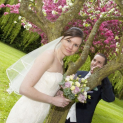 Wedding Fayre at The Wroxeter Hotel - Sunday 28th September