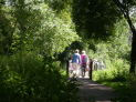 Great British Walk - Exploring Morden Hall Park