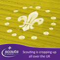 Worthing District Scouts - Volunteers needed