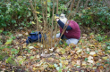 Introduction to Coppicing at The Earth Trust Centre