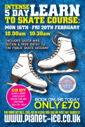 Learn to Skate in  5 days