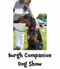 Burgh Heath Companion Dog Show #dogshow