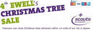 4th Ewell (Nonsuch) Scouts Christmas Tree & Mistletoe Sale @nonsuchtrees