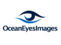 Ocean Eyes Images