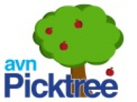 AVN Picktree Business Strategies