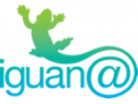Iguana Business Solutions