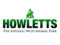 Howletts Wild Animal Park