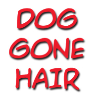 Dog Gone Hair