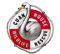 Cuan House Wildlife Rescue