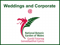 Weddings and Corporate @ National Botanic Garden of Wales