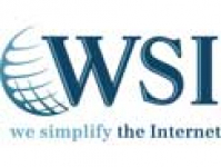 WSI - Internet Consulting