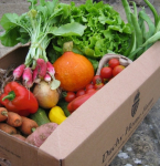 Get Healthy with home produced organic fruit & veg