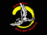 Black Belt Academy Martial Arts