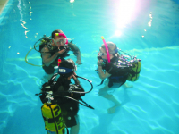 15% off the PADI Open Water Course!