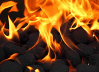 Winter Solid Fuels Prices Held!