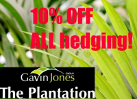 10% off ALL hedging