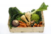 4 Veg Boxes for the price of three