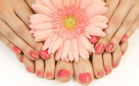 Polish Pro Manicure OR Pedicure! Was £28 Now ONLY £18!