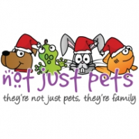 Christmas crackers for your pet!!