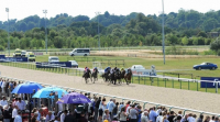 Fabulous Racing & Hotel offers from Wolverhampton Racecourse