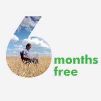 6 Months Rent FREE on Virtual Offices