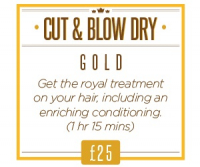 Cut & Blow Dry with a deep conditioning treatment for only £25 Rrp £46