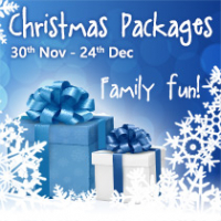 Great Value Christmas Family Fun Offers!