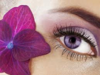 50% OFF An Eye Brow / Lash Tint Including an Eye Brow Wax! Now ONLY £7!