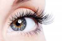 £18 off Lash Lift and Tint